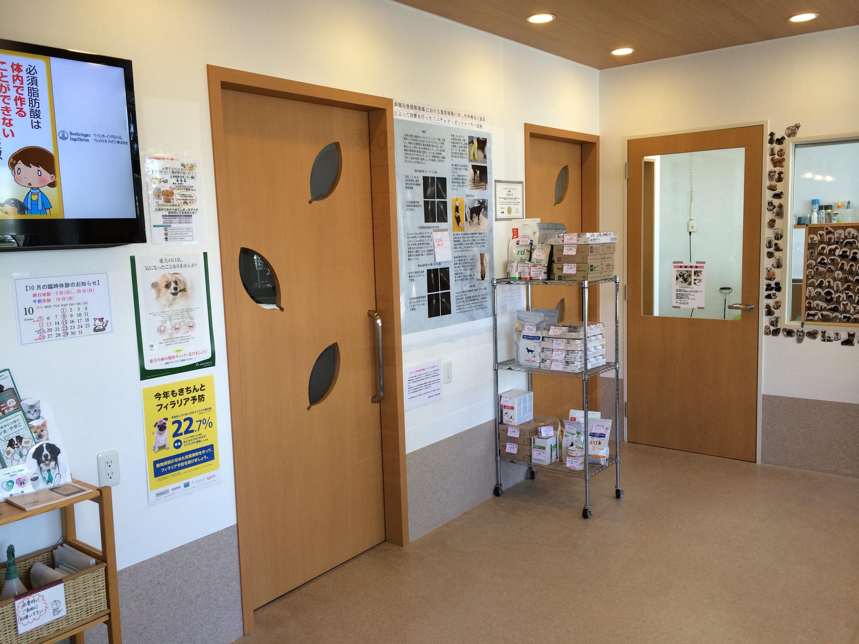 梨の木どうぶつ病院/昭島市の動物病院(整形外科、夜間救急)